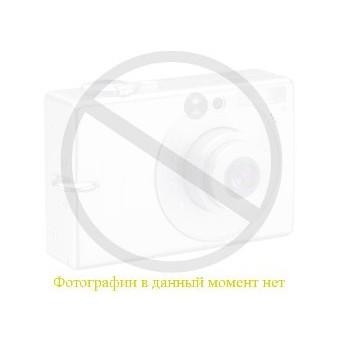Струйный картридж 52110003 (ориг)